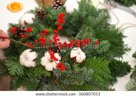 Create great winter composition decor apartment or house.
