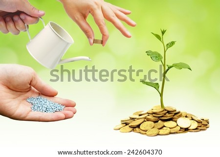 Creating ethical and moral business / CSR in Business / Tree growing on coins / Green business - stock photo
