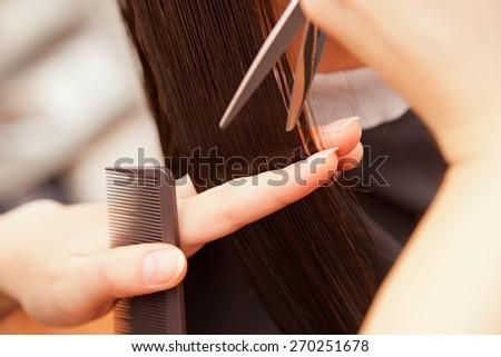 creating hairstyles hairdresser at salon. indoor shot - stock photo