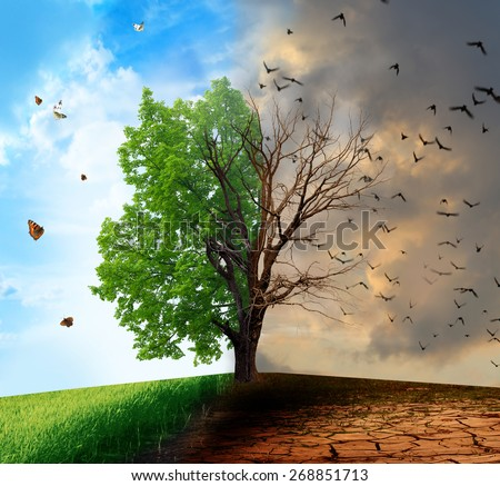Creative concept landscape. Live and dead tree