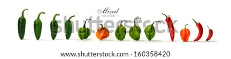 Creative panorama image of assorted mixed hot Chillies with soft shadows against a white background. Copy space. - stock photo