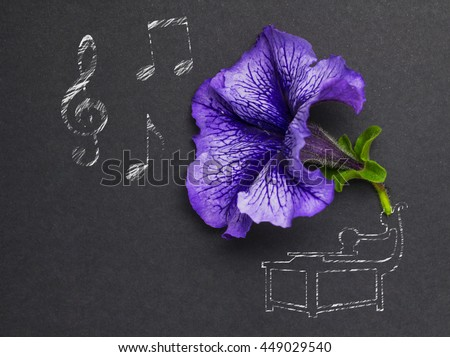 Creative photo of a flower and illustrated gramophone with notes on black background.  - stock photo