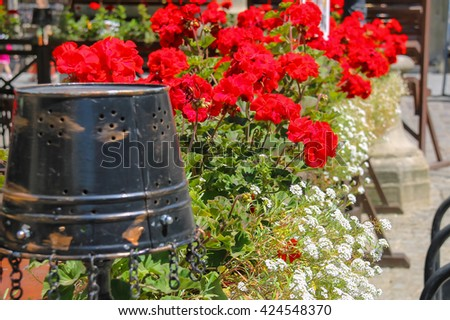 Creative street design of cafe terrace with blooming geranium and old metal bucket in the city center. Lviv, Ukraine - stock photo