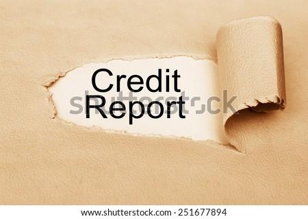 Credit Report - stock photo