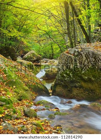 Creek among large stones. Autumn forest - stock photo