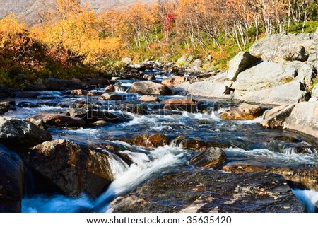 Creek and autumn color in the landscape