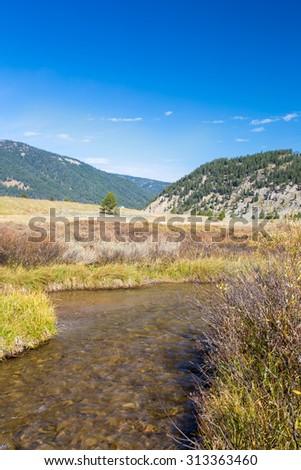 Creek flowing through Yellowstone National Park. - stock photo