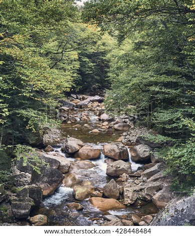 Creek in The Forest of New Hampshire, USA. - stock photo