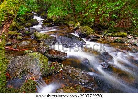 Creek of Clare Glens in Co. Limerick, Ireland - stock photo