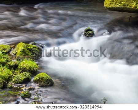 Creek with moss - stock photo