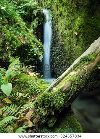 Creek with waterfall - stock photo