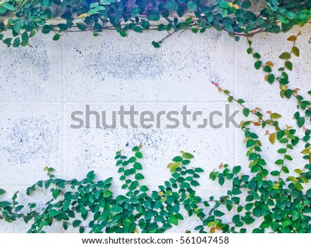 green block wall attached to the stem wall stock images royalty free images