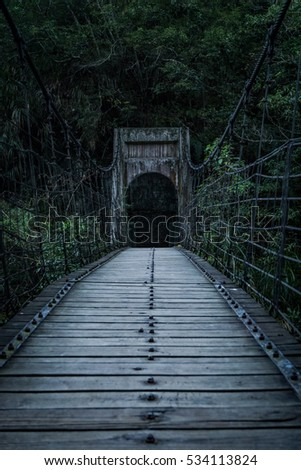 Creepy Suspension Bridge