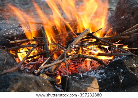 Crest of flame on burning wood in fireplace. Logs on the Fire. Closeup of firewood burning in fire. - stock photo
