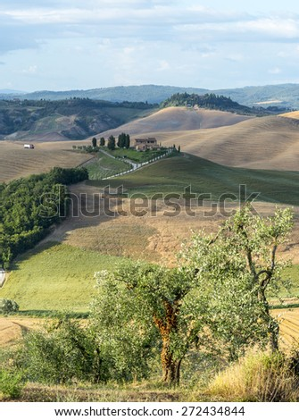 Crete senesi, characteristic landscape in province of Siena (Tuscany, Italy), at summer. - stock photo