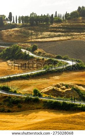 Crete senesi, characteristic landscape in province of Siena (Tuscany, Italy), at summer. - stock photo