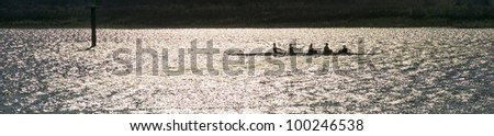 Crew out for early morning rowing practice - stock photo