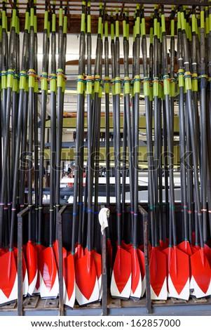 Crewing Oars - stock photo
