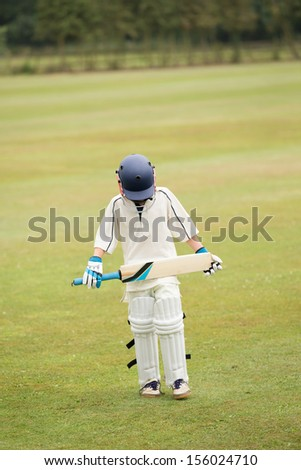 Cricket - stock photo