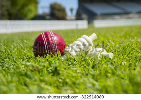 cricket ball and bails on oval