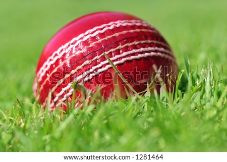cricket ball on the grass - stock photo