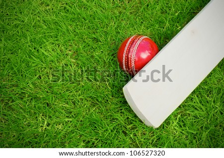 cricket bat and ball on green grass pitch with copy space - stock photo