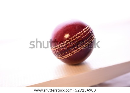 Cricket bat and ball on isolated white background