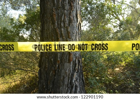 Crime scene in the forest: Yellow police line do not cross tape - stock photo