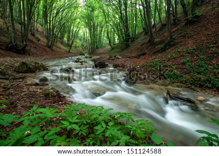 Crimea mountain river at forest - stock photo