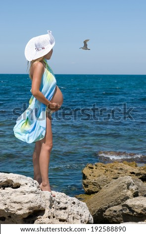 Crimea, sea gulls and a pregnant woman. Clear Skies. - stock photo
