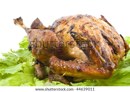 Crispy Roast Turkey with salad - Studio Shot .
