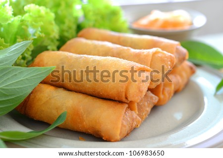 crispy spring rolls on dish with vegetable - stock photo