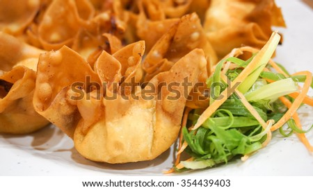 Crispy Wonton. Wonton is American Chinese Cuisine that fried (shallow depth of field).