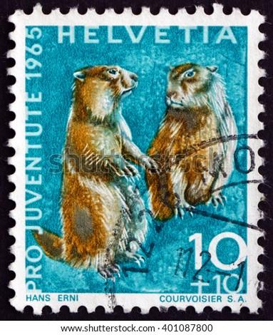 CROATIA ZAGREB, 7 FEBRUARY 2016: a stamp printed in the Switzerland shows Alpine Marmots, Marmota Marmota, Animal, circa 1965 - stock photo