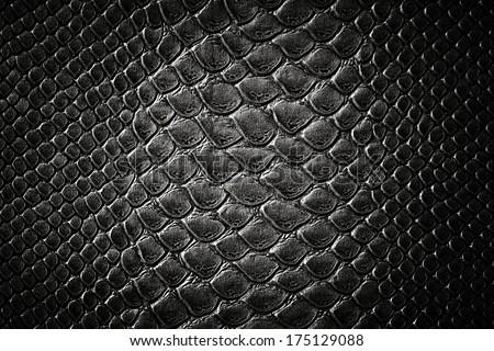 Crocodile black skin leather texture - stock photo