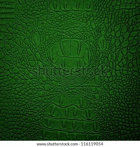 crocodile leather green - stock photo