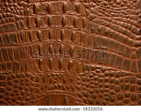 Crocodile leather texture - stock photo