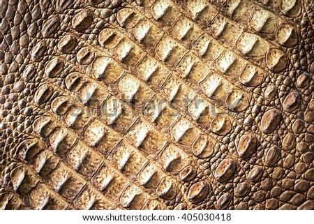 Crocodile skin diagonal texture - stock photo