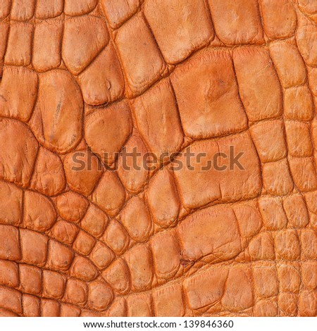 crocodile texture handbag glamour serpent fashion texture quality vintage leather pattern reptile textile tropical suitcase predator contrast textured material snakeskin crocodile reptilian artificial - stock photo