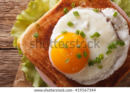 Croque madame sandwich with a fried egg close-up. horizontal view from above