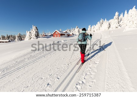 Cross Country Skier climbing a hillside with Log Cabins and snow covered firs,