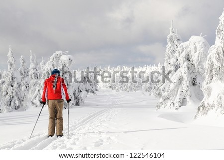 Cross-country skiing - stock photo