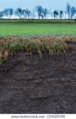 cross section of a grass field with exposed soil following erosion or landslide - stock photo