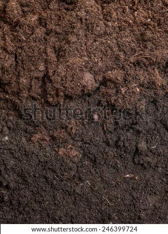 Cross-section of garden soil - stock photo