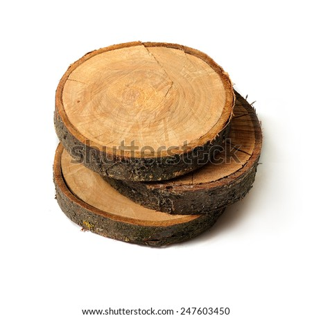 Cross section of several tree stumps isolated on white background.  - stock photo