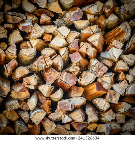 Cross section of the timber for the background.. - stock photo