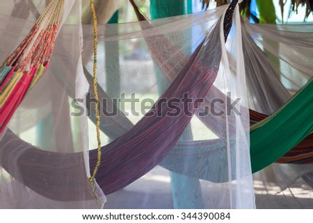 Crossed hammocks in a paradise park - stock photo