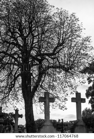 Crosses in winter in a graveyard - stock photo