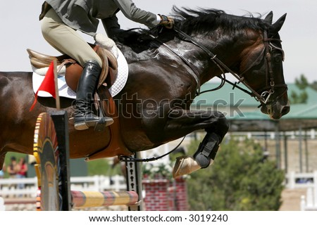 Crossing The Hurdle – Equestrian Theme (shallow focus)