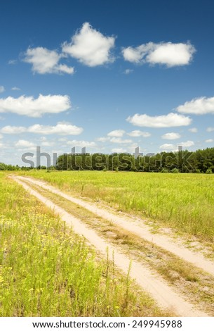 crossroad throught the vibrant field of wildflowers and forest.summer landscape - stock photo